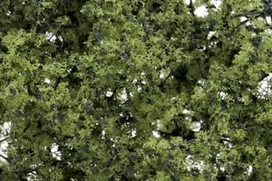 Bilde av Løvtrær og busker lys